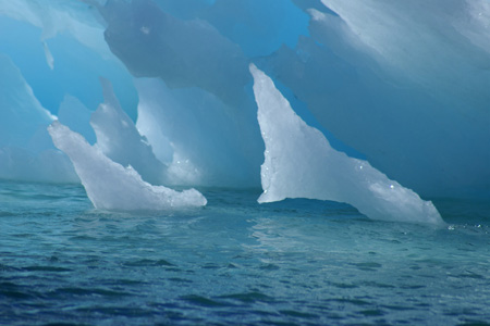"""""""...it is all about the ice."""" Copyright Lisa R. Withrow. Used with permission."""
